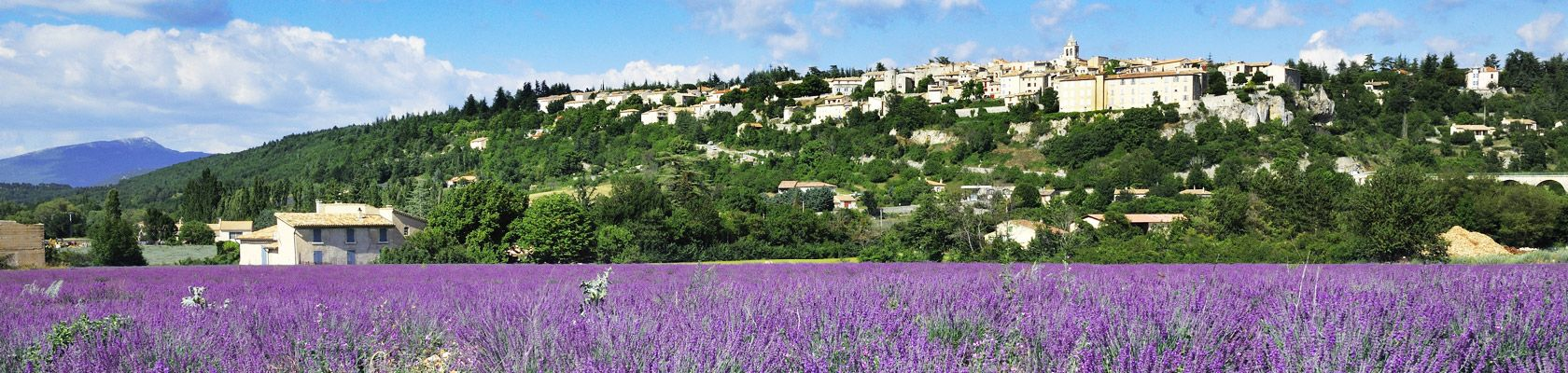 Welcome in Provence !